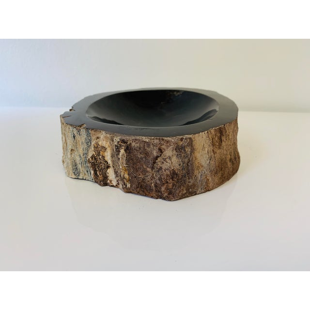 Black Petrified Wood Bowl/Catchall For Sale - Image 8 of 8