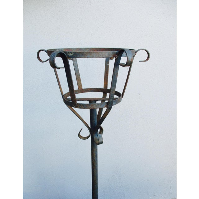 French Mediterranean Iron Planters - A Pair - Image 3 of 9