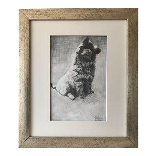 Original Vintage Drawing of a Dog Evelyn Anderson 1929 For Sale