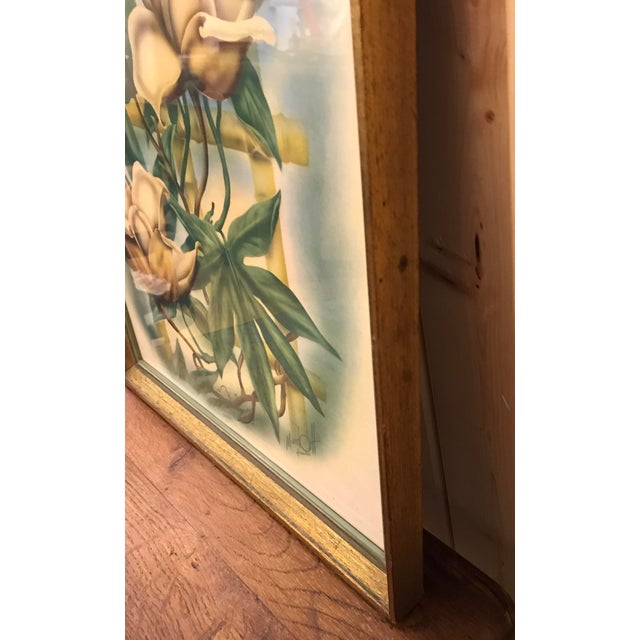 Mid Century Lotus Botanical Print by Ted Mundorff For Sale In Dallas - Image 6 of 11