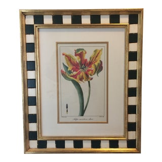 "Late 20th Century Vintage Framed ""Tulipa Monstrosa Altera"" Print by Pancrace Bessa For Sale"