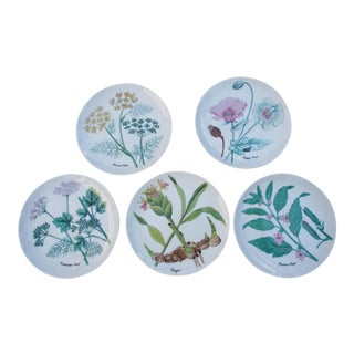 Horchow Collection Botanical Dessert/Salad Plates - Set of 5