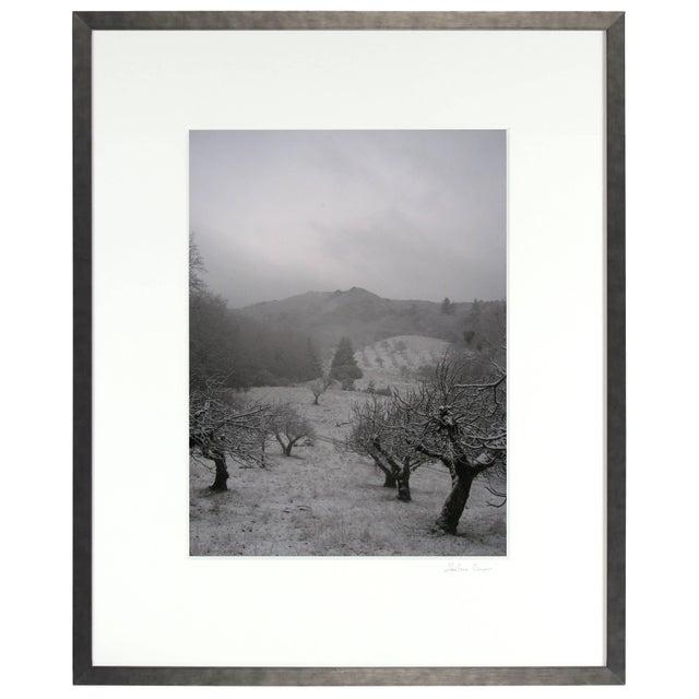 "Gaetan Caron Gaétan Caron ""Orchard in Snow"" Framed Mendocino Photograph, 2010 For Sale - Image 4 of 5"