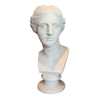 Neoclassical Style Large Plaster Bust of Aphrodite For Sale
