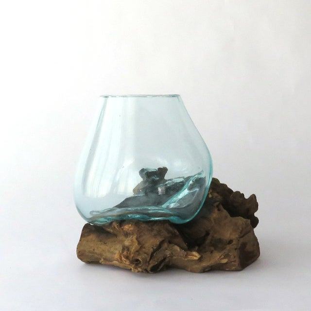 Glass on Teak Driftwood Terrarium - Image 2 of 7