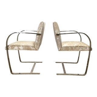 Mies Van Der Rohe Brno Chairs for Knoll in Brazilian Cowhide - Pair For Sale