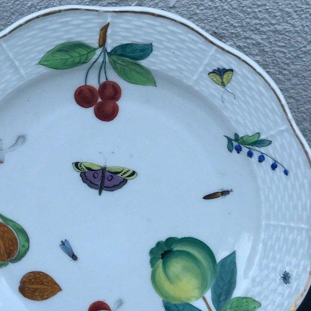 Ceramic Three Antique European Naturalistic Porcelain Plates For Sale - Image 7 of 13