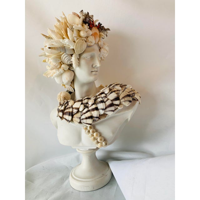 Medium Apollo Shell-Encrusted Bust For Sale In West Palm - Image 6 of 6