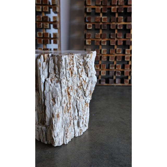 Brutalist Petrified Wood Side Table For Sale - Image 3 of 12