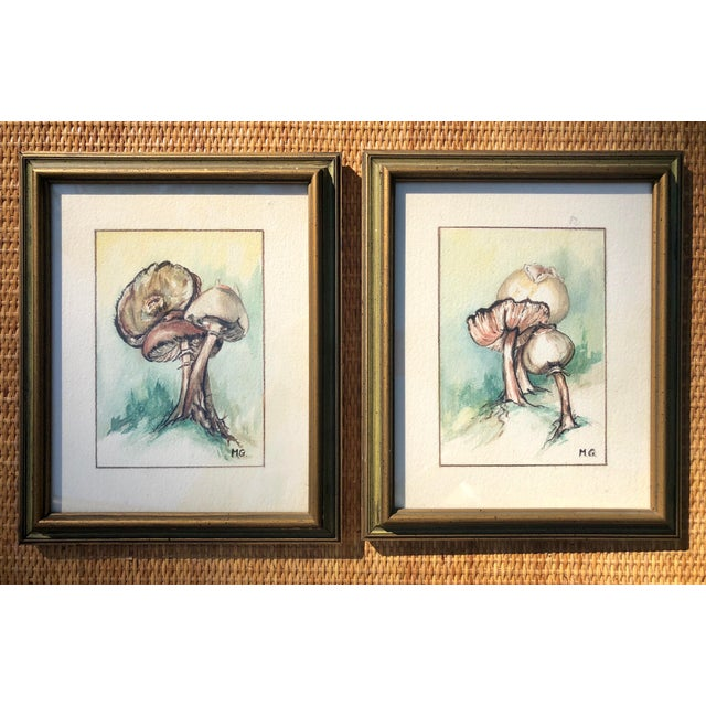 Framed Original Mushroom Watercolor Paintings - a Pair For Sale In Charleston - Image 6 of 7