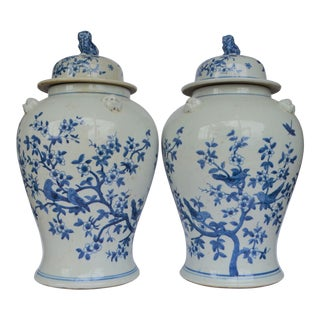 Blue and White Swallow & Cherry Blossum Ginger Jars - a Pair For Sale