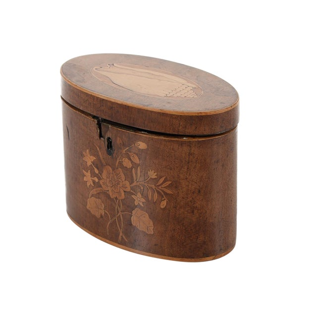 19th Century Oval Shaped Wood Box with Sea Shells - Image 1 of 9