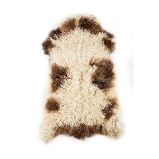 """Contemporary Long Wool Sheepskin Pelt/Handmade Rug - 2'0""""x3'2"""" For Sale In Chicago - Image 6 of 6"""