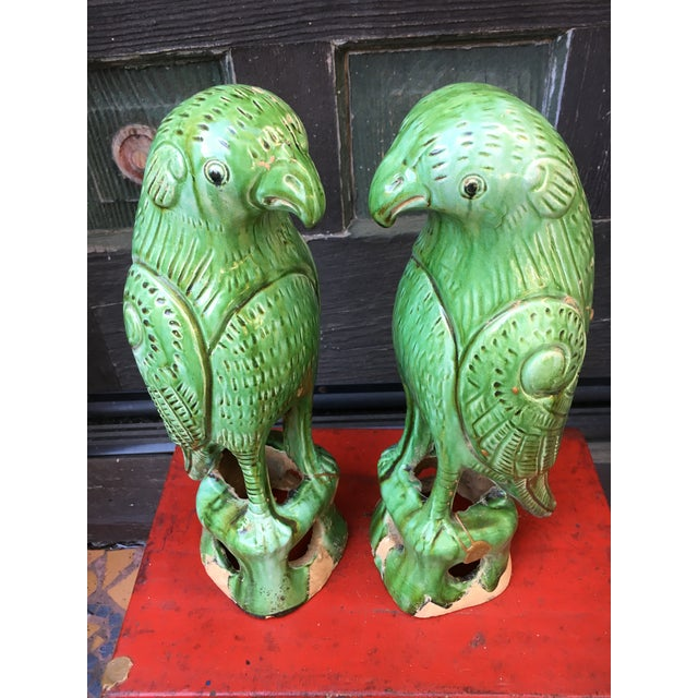 Mid 20th Century Vibrant Chinese Majolica Parrots, a Pair For Sale - Image 5 of 9