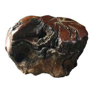 20th Century Organic Modern Burl California Redwood Hand Carved Live Edge Wood Jewelry Container For Sale