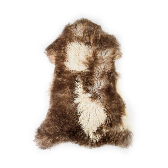 """Animal Skin Contemporary Natural Sheepskin Pelt - 2'4""""x3'6"""" For Sale - Image 7 of 7"""