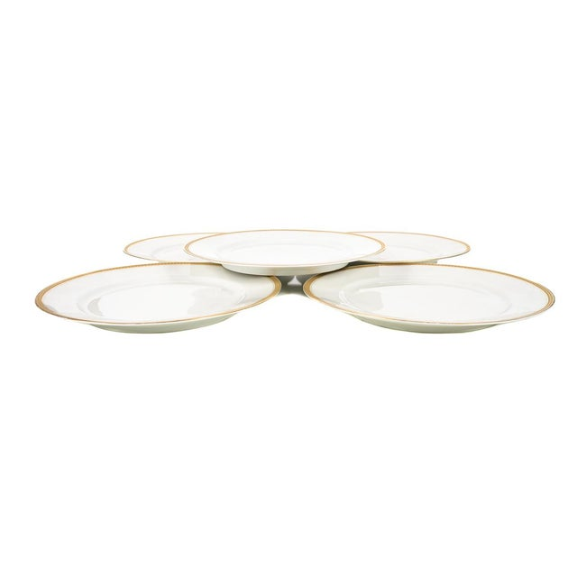 """Rosenthal Selb Bavaria Bone China w/Gold trimming - Dinner Plates - Set of 5 size 1 x 10"""" A beautiful piece that will add..."""