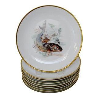 Rosenthal Porcelain Plates - Set of 9 For Sale