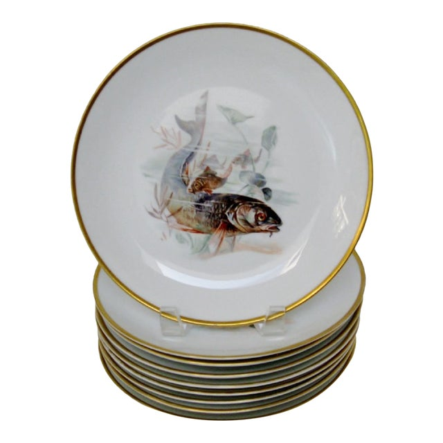 Rosenthal Porcelain Plates - Set of 9 For Sale