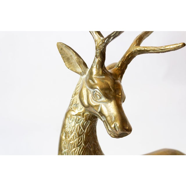 Mid 20th Century Vintage Mid-Century Statement Brass Stag Sculpture For Sale - Image 5 of 11