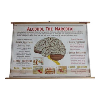 "1930's Antique ""Alcohol The Narcotic"" Poster For Sale"