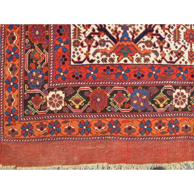 Persian Afshar Tribal Rug For Sale - Image 4 of 8