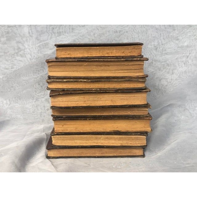 Brown Antique Leather Bound Spanish Books - Set of 8 For Sale - Image 8 of 13