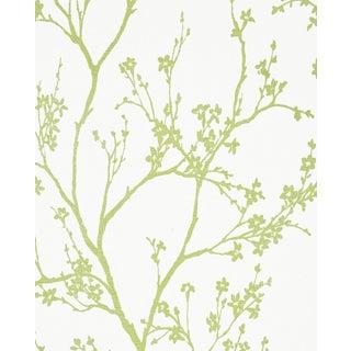 Sample - Schumacher Twiggy Paperweave Wallpaper in Leaf For Sale