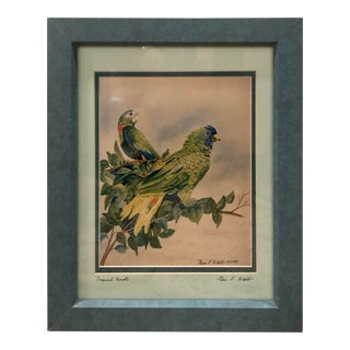 Vintage Signed and Professionally Framed and Double Matted Green Parrot Print For Sale