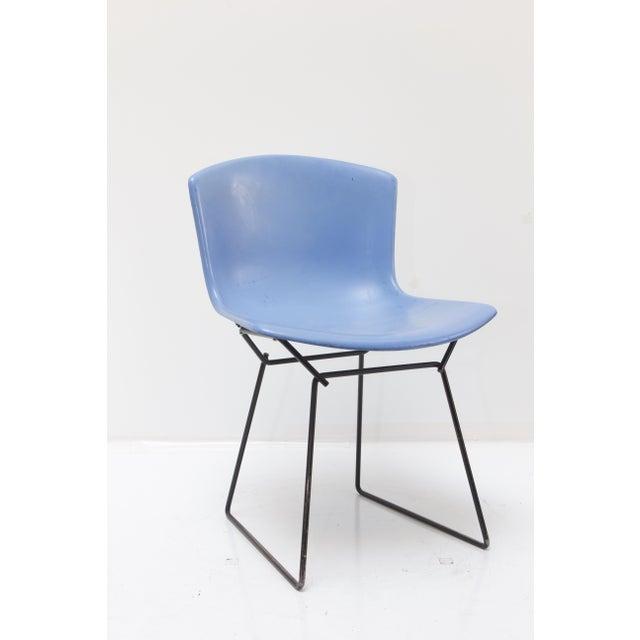 Knoll Bertoia Fiberglass Side Chair Blue - Image 11 of 11