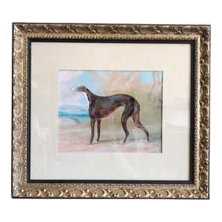 Vintage Greyhound Print of Painting in Gold Frame For Sale