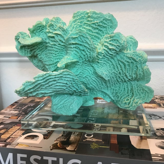 Mounted Faux Coral Specimen - Image 5 of 5