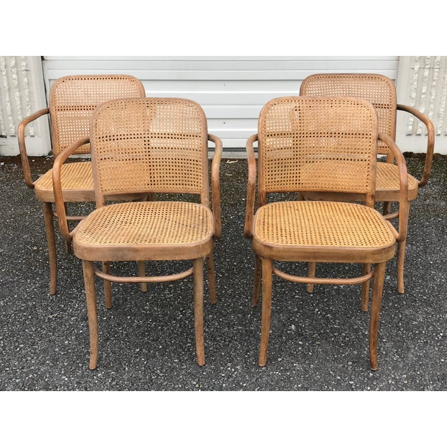 Thonet Vintage Thonet Hoffman Prague Cane & Bentwood Chairs - Set of 4 For Sale - Image 4 of 4