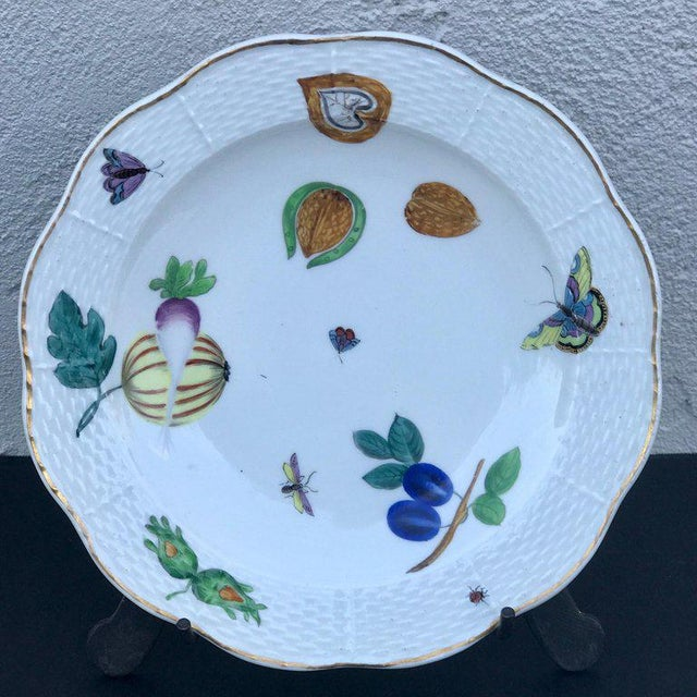 Early 19th Century Three Antique European Naturalistic Porcelain Plates For Sale - Image 5 of 13