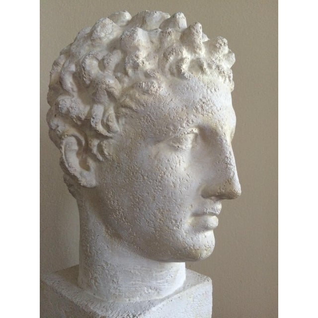Lifesize Plaster Bust of Hermes For Sale - Image 10 of 11