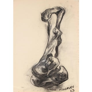 Jack Freeman Bone Still Life Drawing in Charcoal, 1963 For Sale
