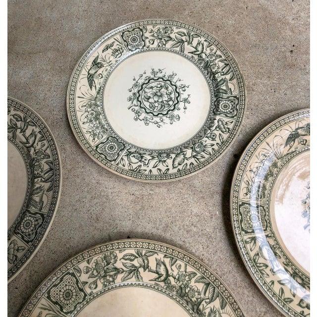 Davenport Antique English Plates Davenport Iolanthe Transferware - Set of 4 For Sale - Image 4 of 7