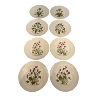 1950s Vintage Bavarian Wild Flower Plates - Set of 8 For Sale