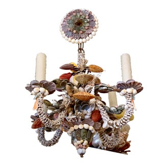 Tiny Rainbow Shell Chandelier For Sale
