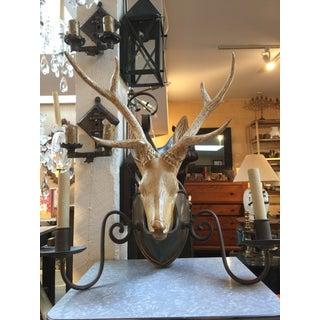Wooden Deer Head Sconce Preview