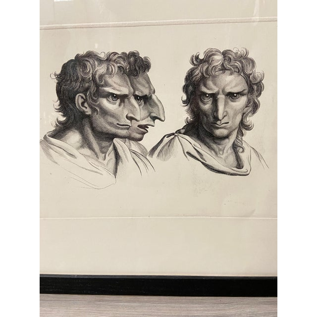 Man as Eagle - Physiognomic Heads Series Framed Illustration by Charles Le Brun For Sale - Image 9 of 12