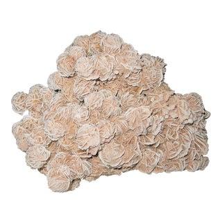 Extra Large Desert Rose - Selenite Mineral Specimen - Roses of Crystal & Sand - on Stand For Sale