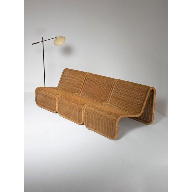 Large Wicker Set by Tito Agnoli for Bonacina For Sale - Image 9 of 10