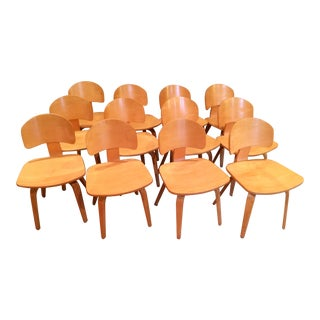 Vintage Thonet Mid Century Style Plywood Chairs- Set of 12 For Sale