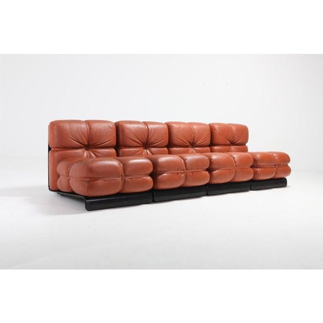 Carla Venosta Ultra Rare 'San Martino' Sectional Sofa for Full For Sale - Image 11 of 13