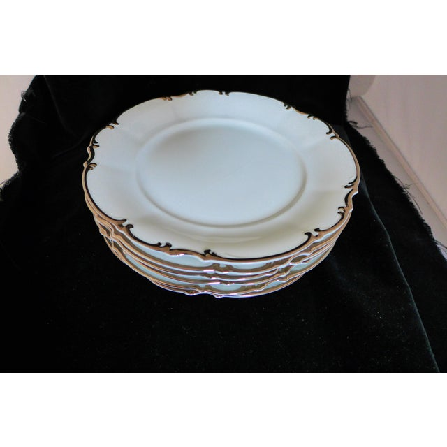 White Hutschenreuther Slyvia Dinner Plates - Set of 6 For Sale - Image 8 of 10