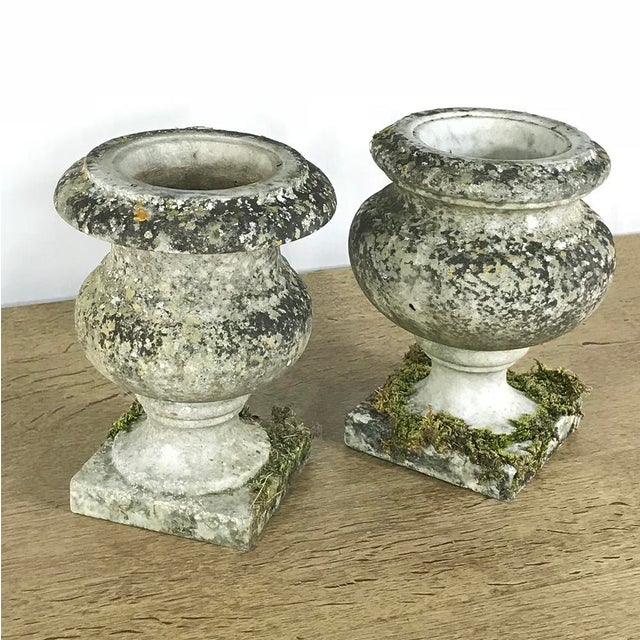 Pair 19th Century Carved Marble Vases For Sale In Dallas - Image 6 of 11