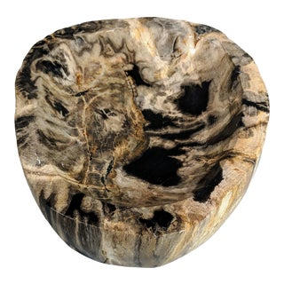 Large Petrified Wood Bowl For Sale