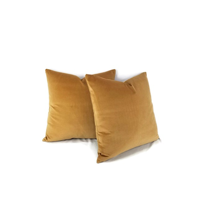 From F. Schumacher is Gainsborough Velvet in the color Mocha pillow cover. This is soft buttery velvet in a stunning spice...
