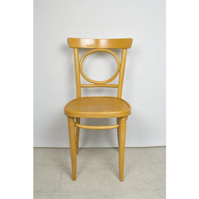 "Vintage set of 4 Radomsko Thonet Bentwood cafe/ bistro chairs. Circa 1950's - 1960's. Marked "" NF 458695 ZPM Radomsko Made..."